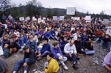Protestation anti-coupe à Clayoquot Sound, Colombie—Britannique dans les années 90 (source)