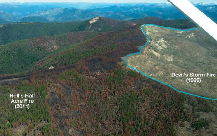 Un feu de 2011 dans la Réserve naturelle Selway-Bitterroot arrêté par un feu de 1999 (Photo par M. Bob Mutch - Source)