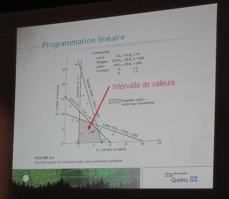 """Illustration du principe de l'optimisation par le biais de la programmation linéaire. C'est le logiciel Mosek (""""l'optimiseur"""") qui est en charge de cette tâche dans le calcul des possibilités forestières au Québec. (Photo: E. Alvarez)"""