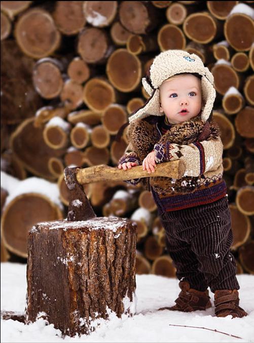 Le Québec forestier, vu par le FSC