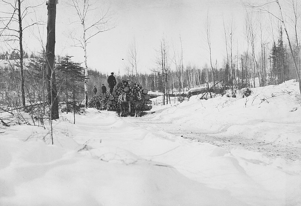 Chargement de billots dans le secteur du Lac St-Aubin (Mauricie?) - Février 1924 (Source: ancien fonds d'archives de Produits Forestiers Résolu à Grand-Mère; numérisation et retouches: E. Alvarez)
