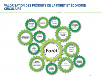 Le principe de l'économie circulaire tel qu'appliqué à Domtar (Windsor). Image tirée d'une présentation de M.André Gravel, ingénieur forestier Domtar.
